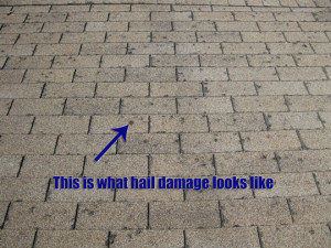 irving-hail-damaged-roof