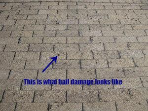 greeley-hail-damaged-roof